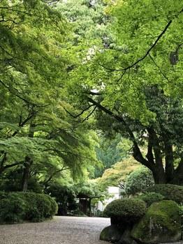 180629_大山崎山荘美術間の入り口付近.JPG