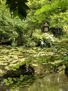 180629_大山崎山荘美術館の庭園.JPG