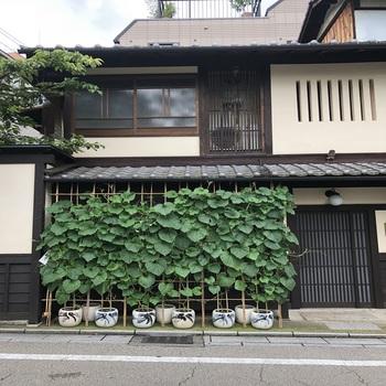 180629_祇園-2.JPG
