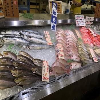 180630_魚太郎-4.JPG